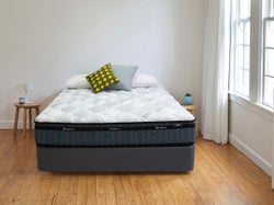 Sleepyhead Chiropractic Focus Plush Queen Bed